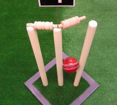 Cricket Table Centres