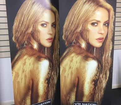 Shakira Roll Ups-min